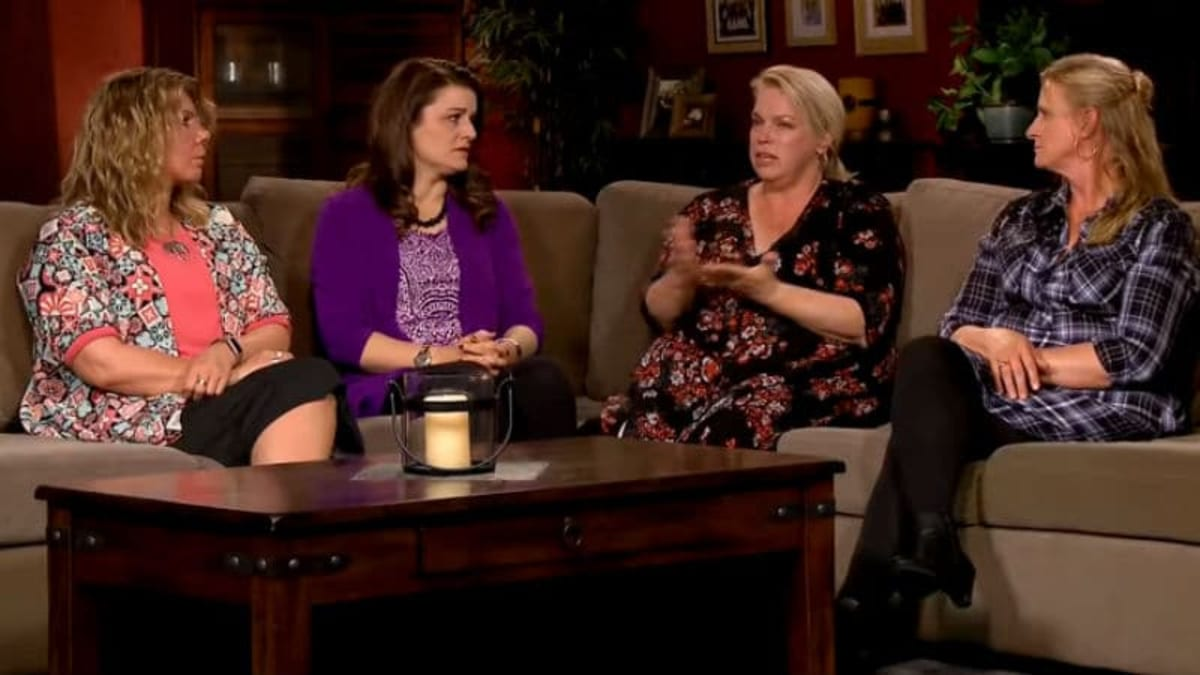Sister Wives - What do the Sister Wives do for work?