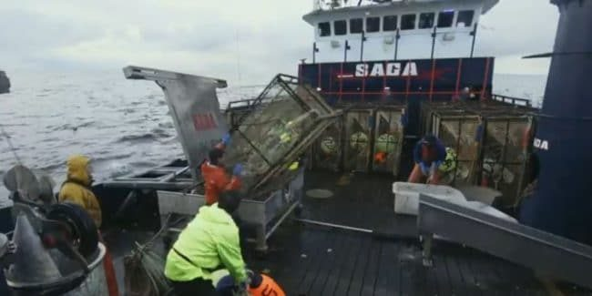 Jake Anderson's Saga has near-miss deadly mistake on Deadliest Catch exclusive