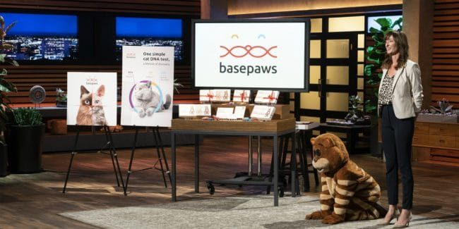 Basepaws on Shark Tank: Have you ever wanted to DNA test your cat?