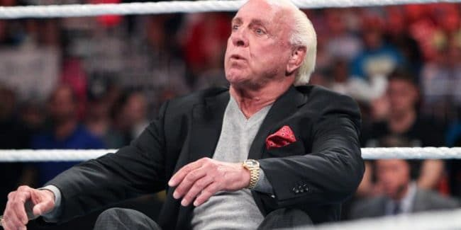 Ric Flair not 'brain dead'
