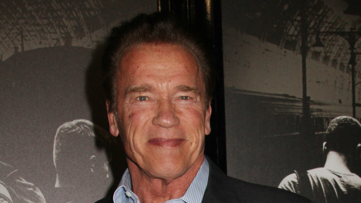 Arnold Schwarzenegger dropkicked in back video: Watch him