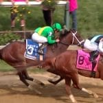 black eyed susan stakes 2019 contenders race to the finish line