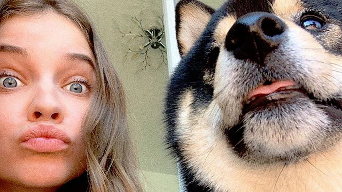 Barbara Palvin and dog posing for selfie
