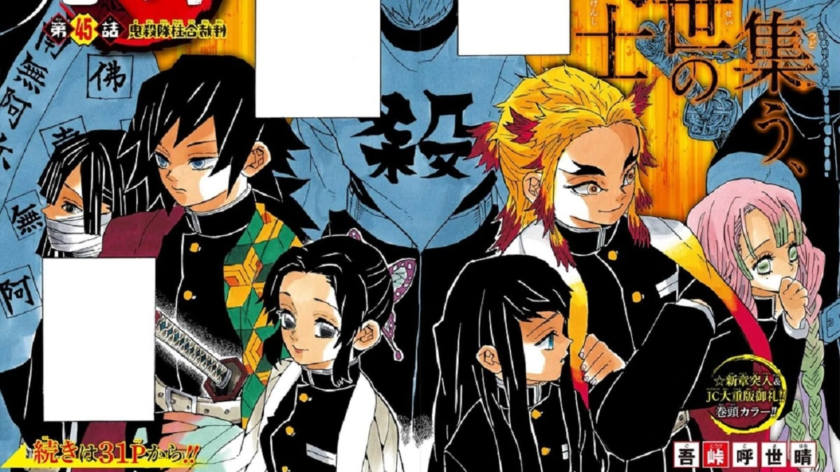 The Hashiras aka the Pillars in Demon Slayer: Kimetsu no Yaiba. Pic credit: Weekly Shonen Jump