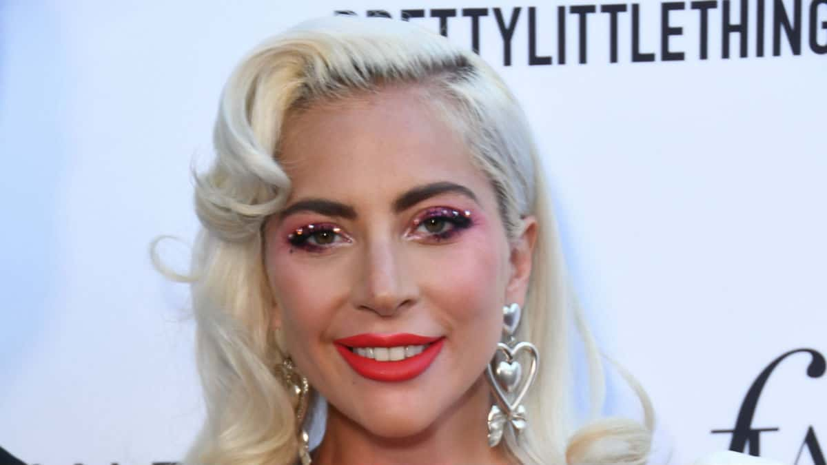 Lady Gaga falls off stage with fan at Las Vegas show.