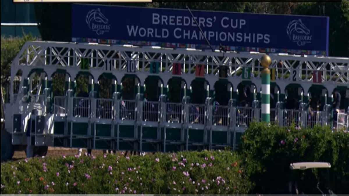 Breeders Cup 2019 Odds Field Entries And How To Watch