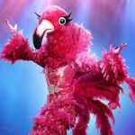 The Masked Singer: Who is the Flamingo based on the NAACP award?