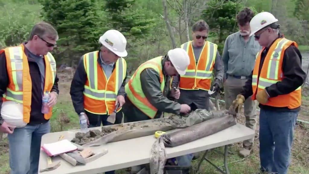 Team examine samples