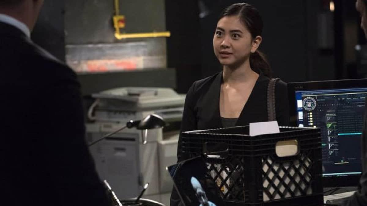 Laura Sohn as Agent Alina Park
