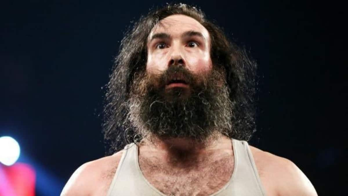 The real reason WWE chose now to release Luke Harper