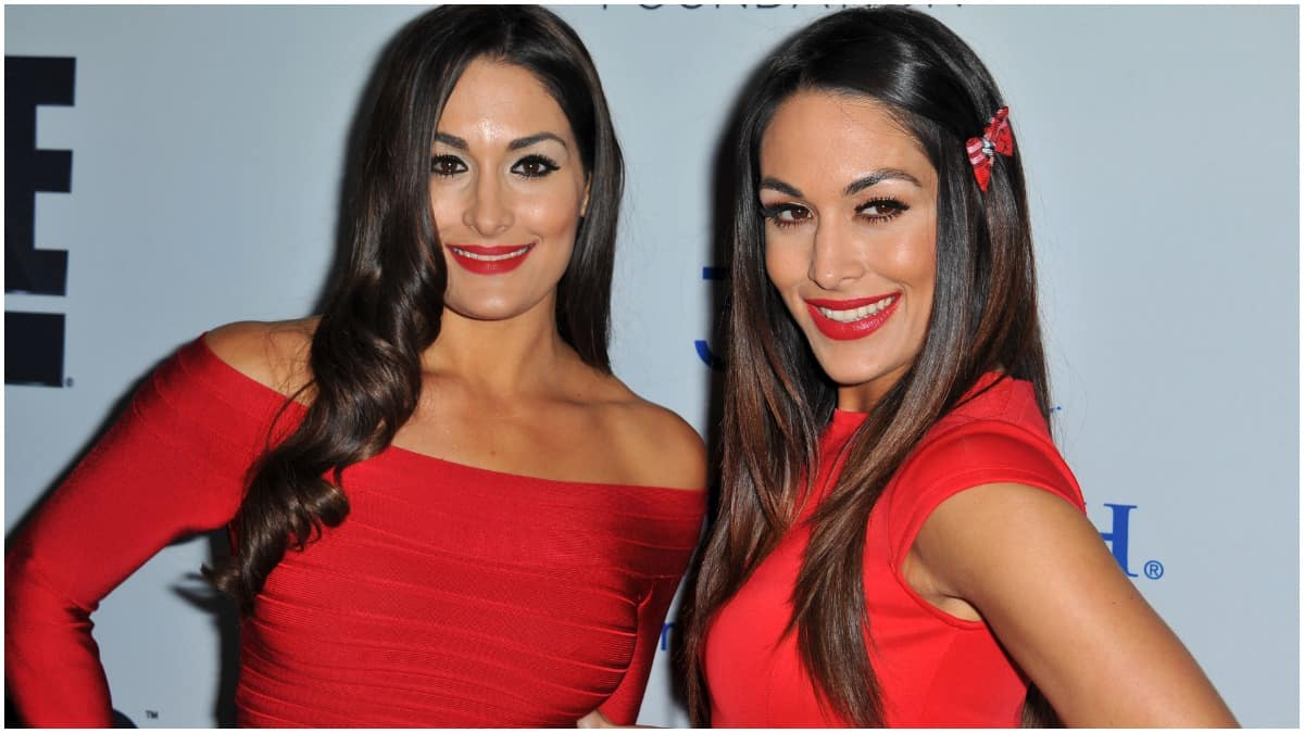 When are the Bella Twins' estimated due dates?