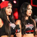 WWE Diva Nikki Bella calls IVF pregnancy rumors ridiculous