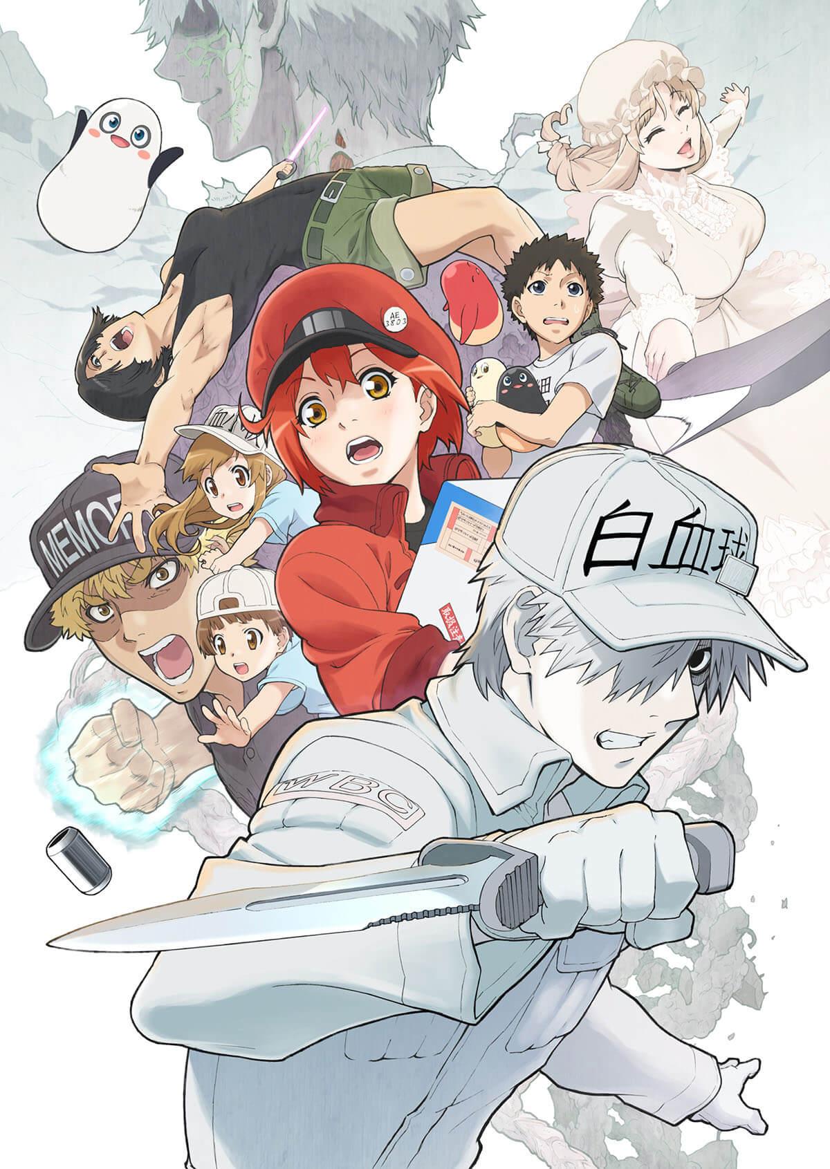 Cells At Work Season 2 Anime Key Visual Hataraku Saibou Season 2