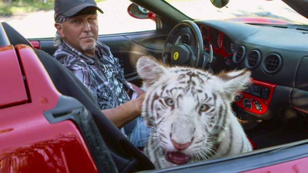 Jeff Lowe rides in a convertable car accompanied by one of his tigers