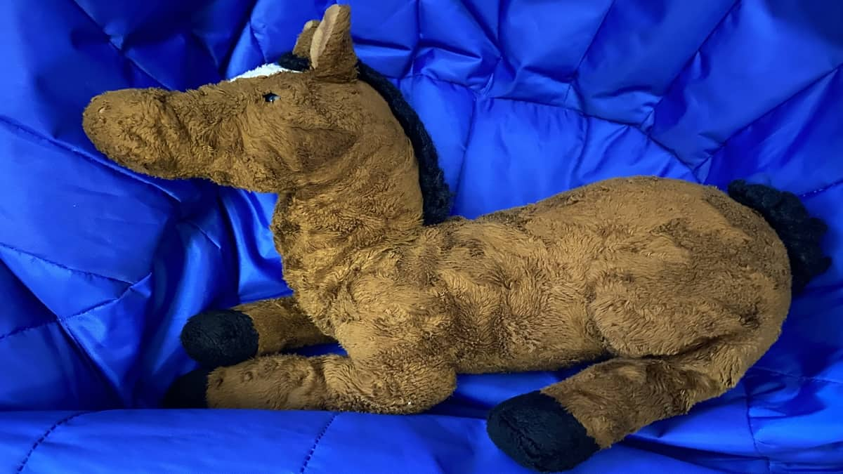 A stuffed horse rests on a beanbag chair