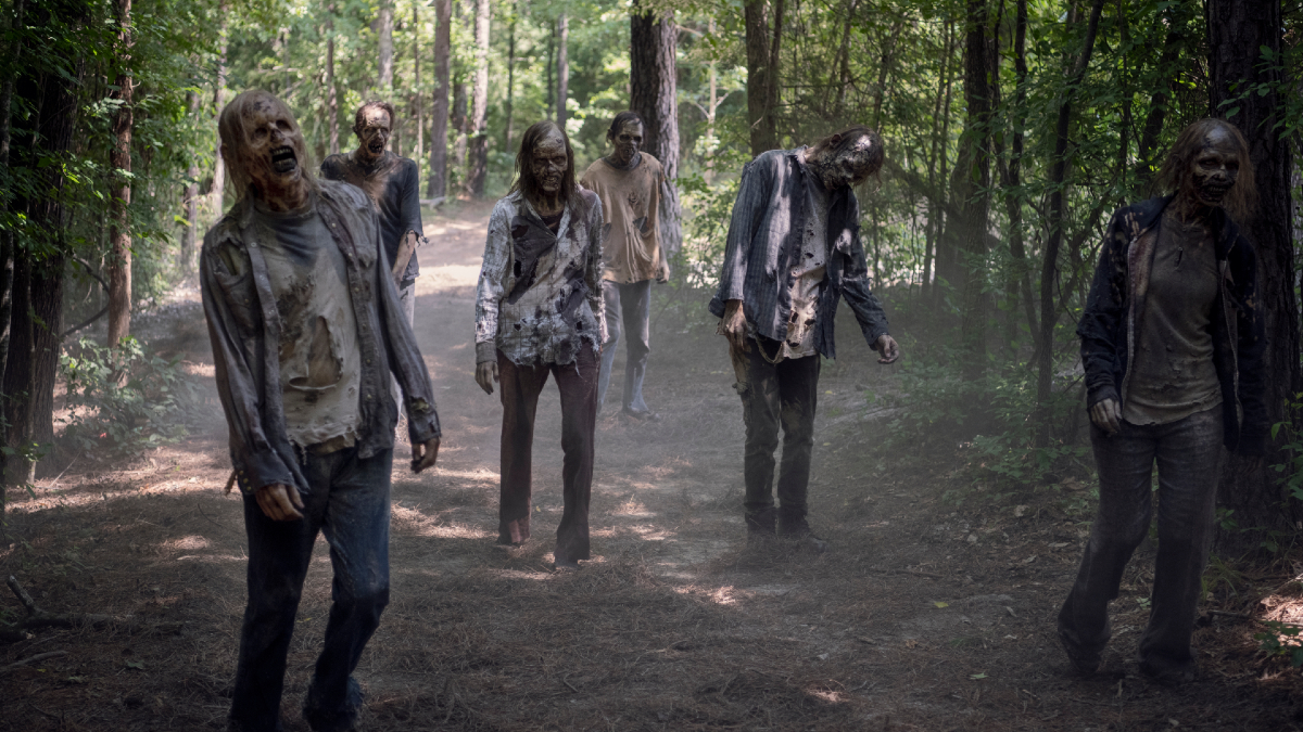 A group of walkers
