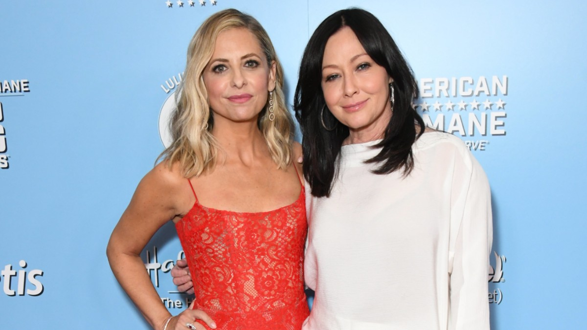 Sarah Michelle Gellar and Shannen Doherty on the red carpet