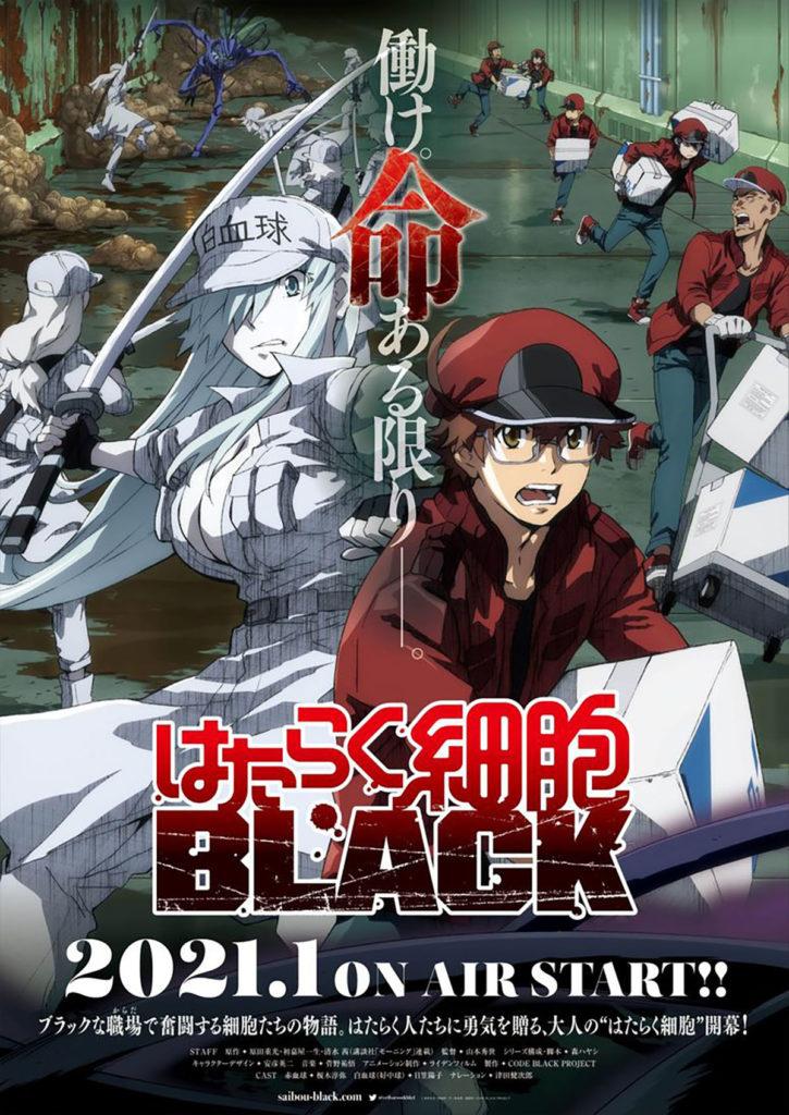 Cells At Work Black Anime TV Key Visual