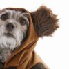 Star Wars dog apparel