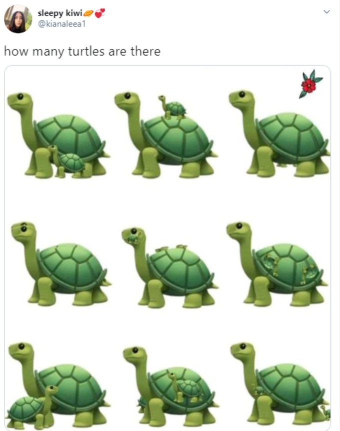 A picture of turtle riddle