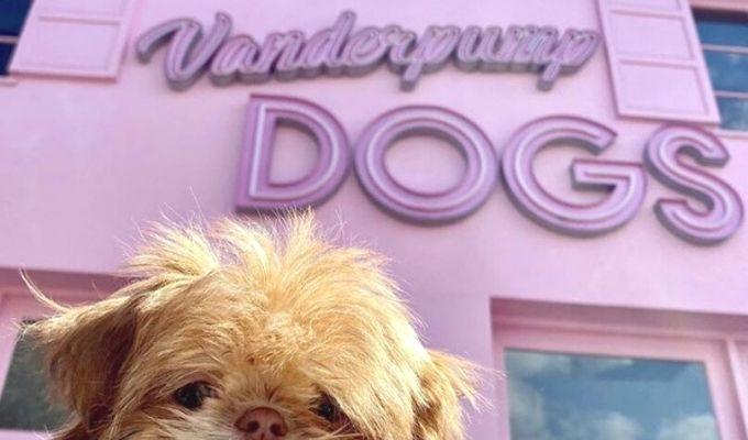 Vanderpump Dogs location Los Angeles