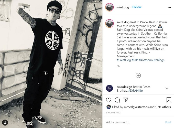 Saint Dog on Instagram