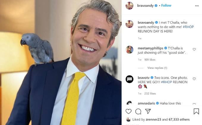 Andy Cohen poses with Monique Samuels' bird T'Challa.