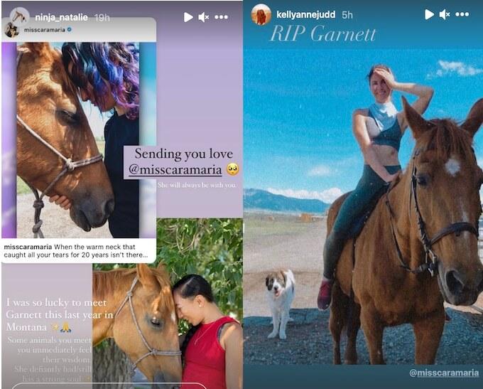the challenge stars share memories of cara maria horse