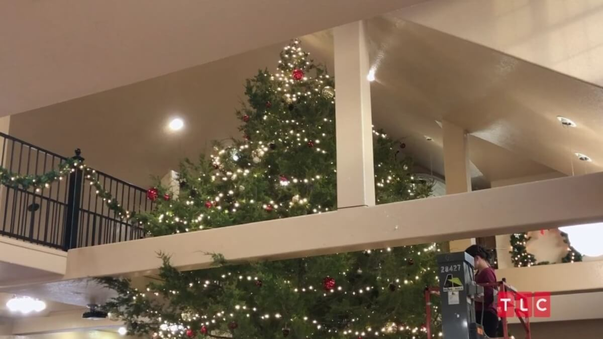 Duggar Christmas tree in the Duggar home.