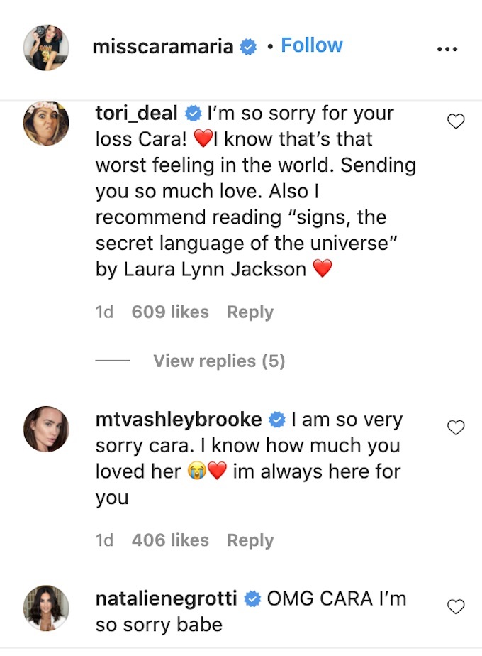 challenge stars leave comments on cara maria post about loss of garnett