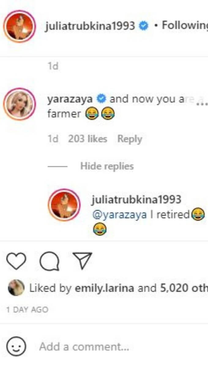 Julia from 90 Say Fiance's Instagram post comments