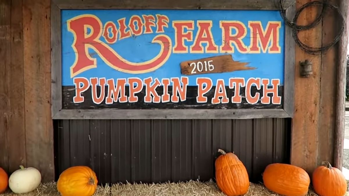 Roloff Farms pumpkin season on TLC