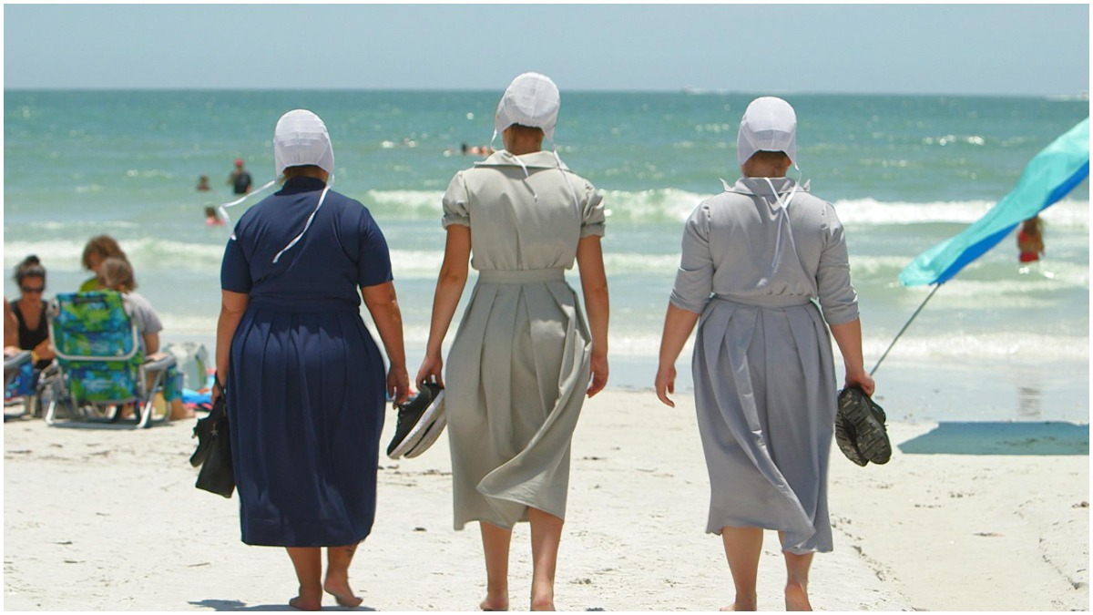The cast of Return to Amish on TLC.
