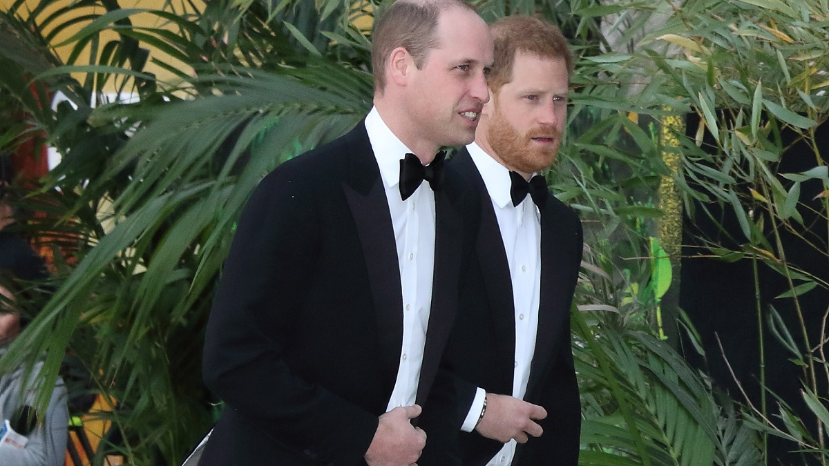 Duke of Cambridge and Duke of Sussex