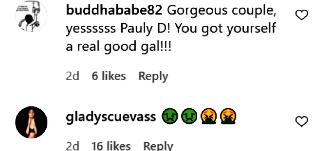 Fan comments regarding Pauly D and Nikki