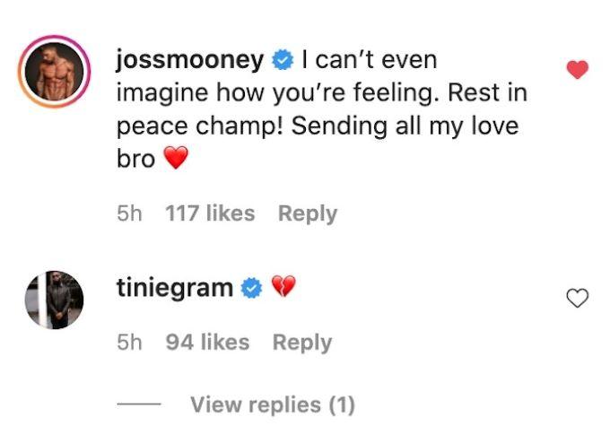 joss mooney ig comments on ashley cain post