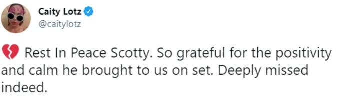 Caity Lotz tweets condolences