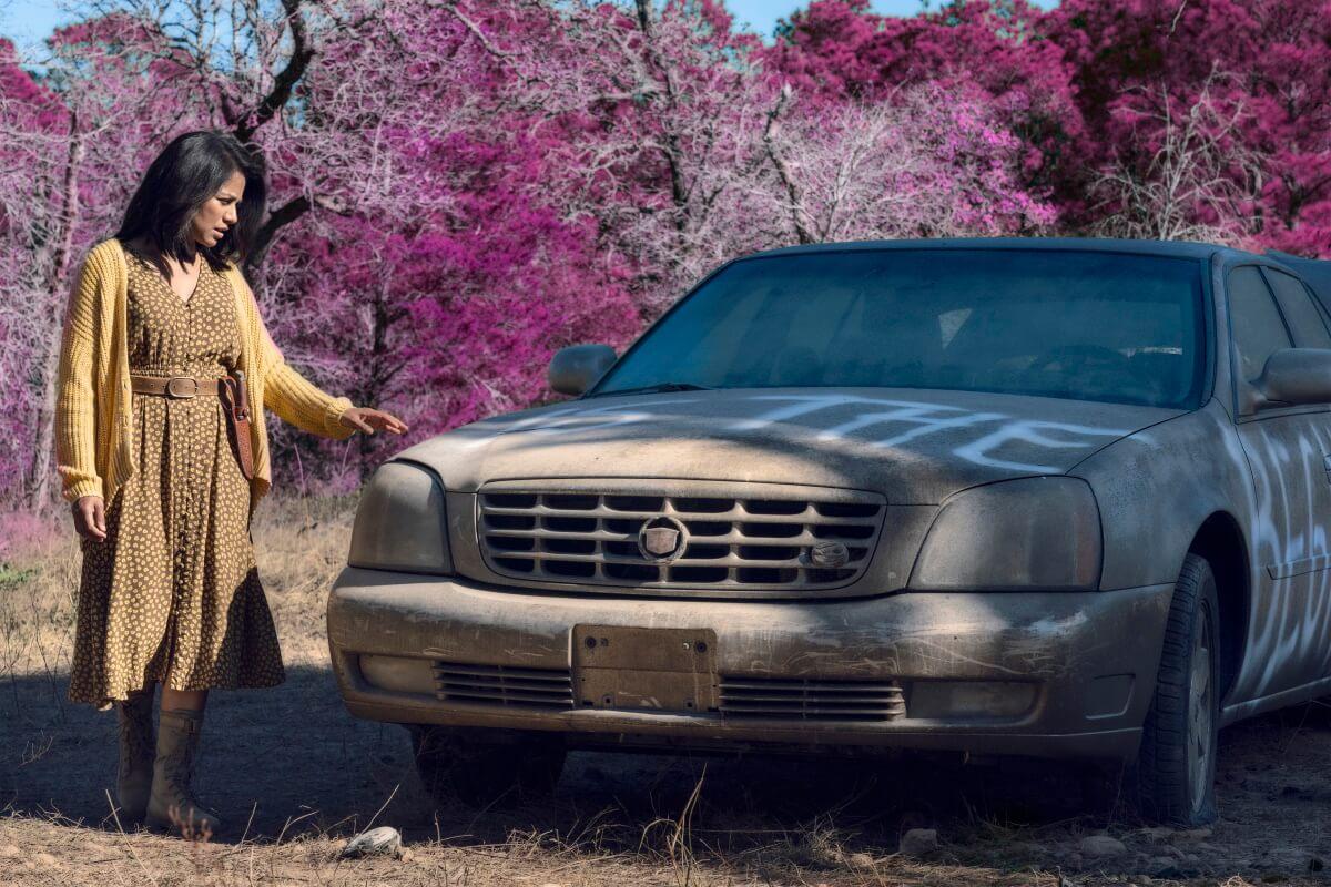 Karen David stars as Grace, as seen in Episode 12 of AMC's Fear the Walking Dead Season 6