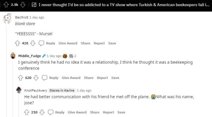 Reddit thread about Mursel and Anna