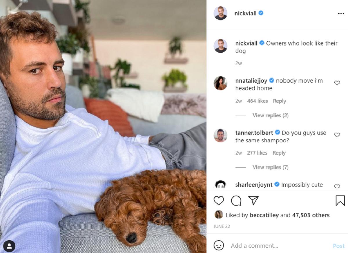 Nick Viall Instagram